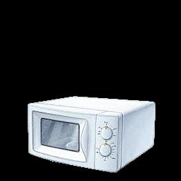 Four micro-ondes électrique 220 v