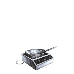 Réchaud à induction petit modèle + wok