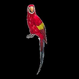 Perroquet H 65 cm