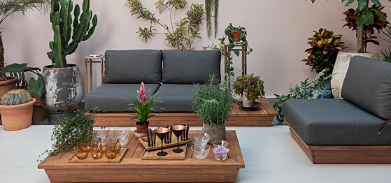 Lounge végétal